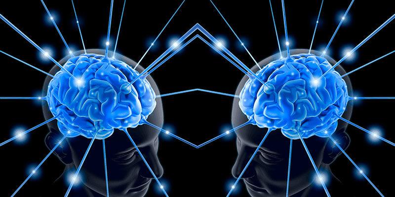 Científicos conectaron los cerebros de 3 personas, permitiéndoles compartir pensamientos