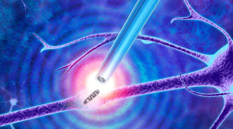Pinzas a nanoescala que pueden realizar 'biopsias' a moléculas