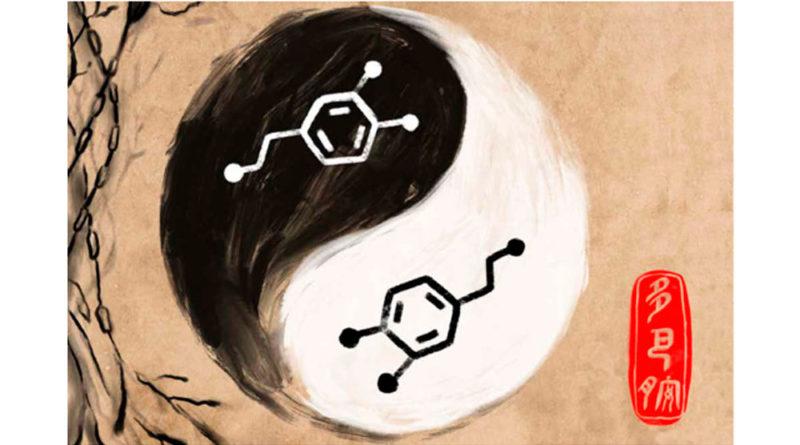 El Ying-Yang de la Dopamina