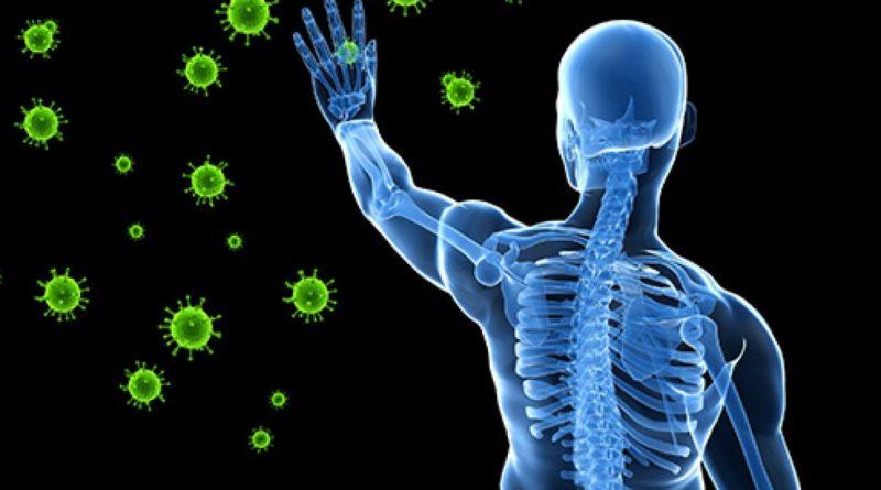 Decodificando el sistema inmunológico humano