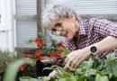 Los mejores relojes para alertas médicas